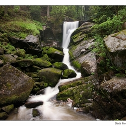 Triberg Waterval