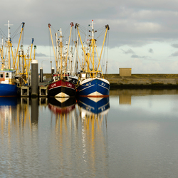 Vissersboten in Lauwersoog