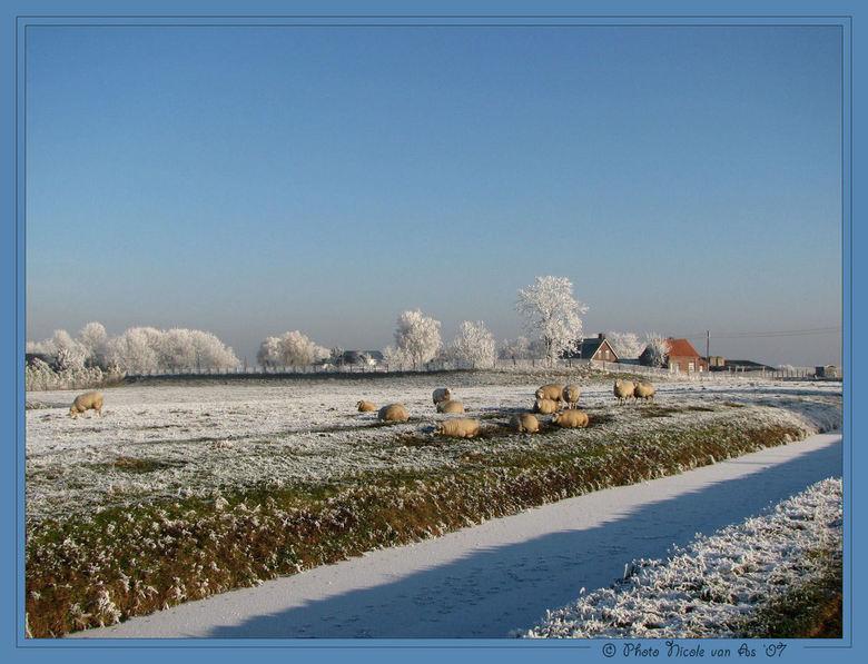 Winter in Nederland. - Wordt het bij jullie ook steeds witter buiten?<br /> <br /> Daarom vond ik het leuk om een sneeuwfoto van vorig jaar even op