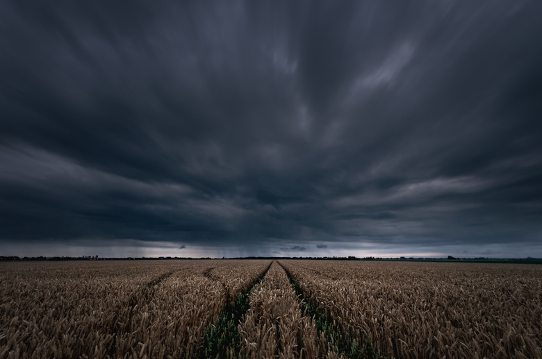 Storm op komst - Toen ik vanochtend door de harde wind naar werk fietste wilde ik graag iets posten wat een beetje paste bij het weer van vandaag (en