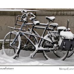 Sneeuwfietsen 2