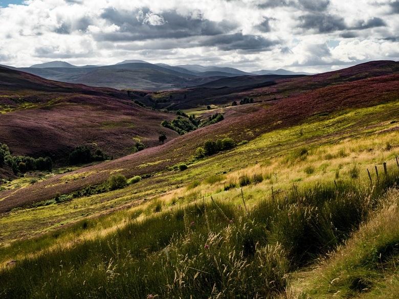 The Highlands - Alle ingrediënten van een Schots landschap aanwezig: bergen, heuvels, heide, donkere wolken, wilde begroeiing, leegte, rust... Ik kan