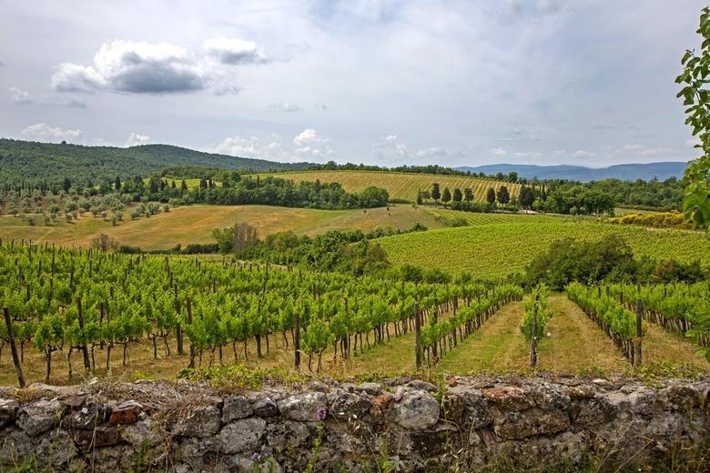 Italië 46 - Toscaans landschap