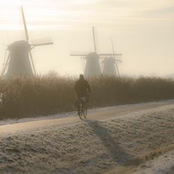 december12 fietser kinderdijk.jpg
