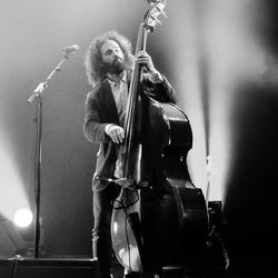 Irishfolkfest.Bass Player
