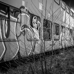treinkerkhof