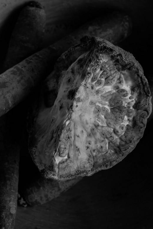 Groenten volgens Weston - Edward Weston behandeld tijdens een fotocursusles