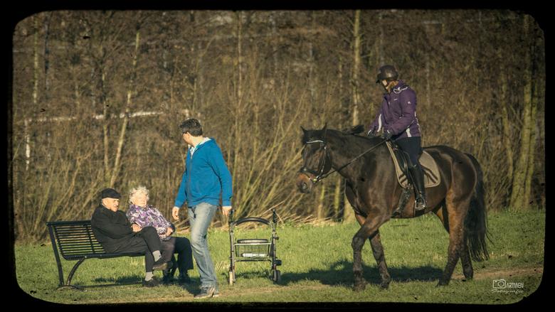 Zacht winter weertje - Maandag 25 januari 2016 prachtig zacht winter weer. |En dan is het genieten op een bankje of lekker op je paard zitten.