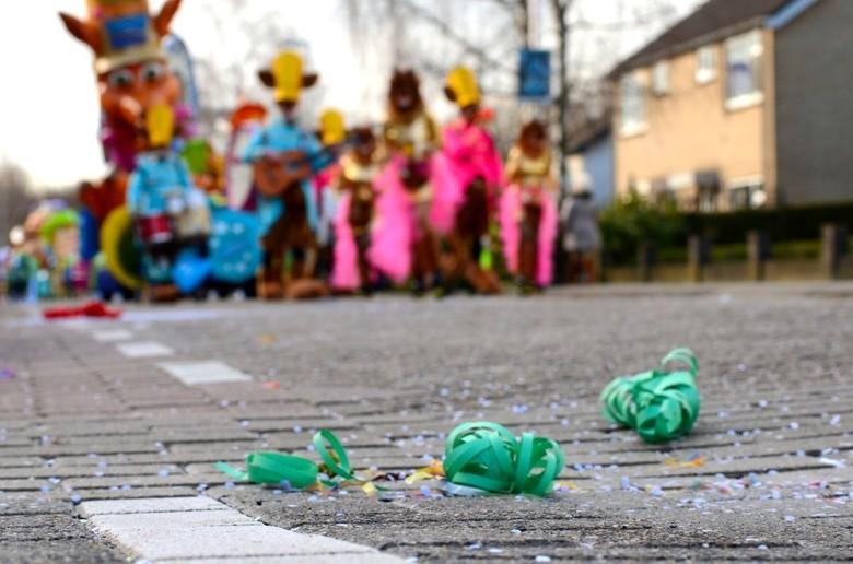 Carnavalsoptocht - Alternatief perspectief op de carnavalsoptocht van het Stijlorenrijk-Zwaaijgat (Etten-Leur)