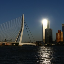 Erasmusbrug Rotterdam & zonnereflectie in hoogbouw