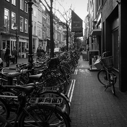 Delft fietsstad