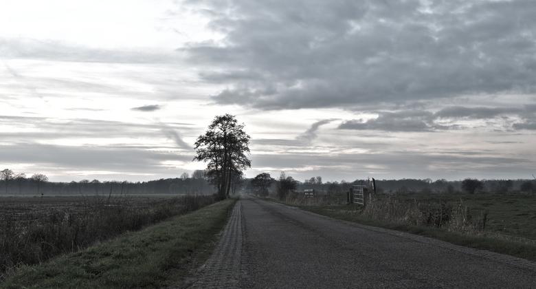 Weg naar laagzoeren - Een typies winter licht plaatje.<br /> <br /> Een koude eind van de dag en een beetje heiig.<br /> <br /> Gr Arwin
