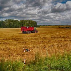 Guus en Juul in het veld