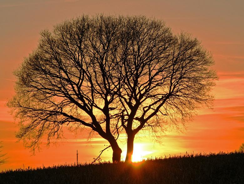 zonsondergang - Avondwandeling
