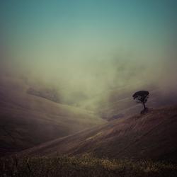 Toscaanse mist