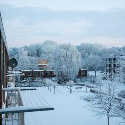 WinterGlow 2011