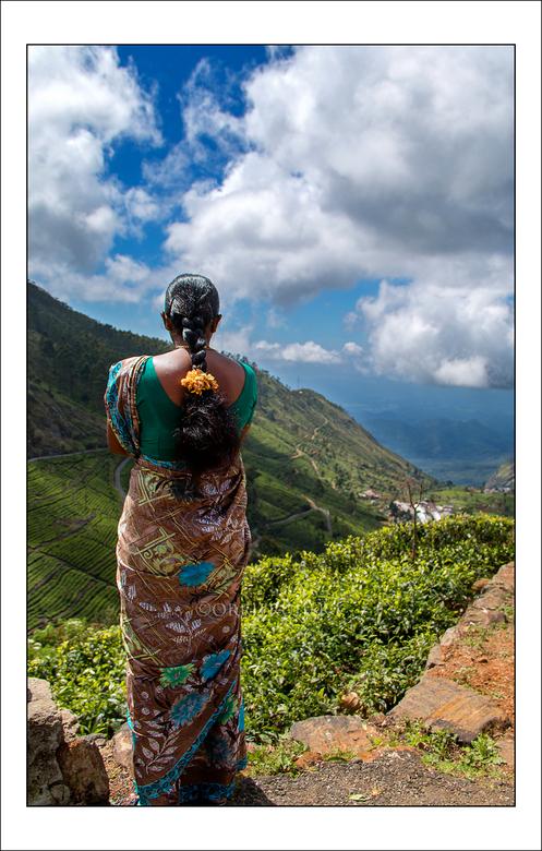uitzicht - deze dame kijkt uit over de theeplantage bij Haputale, Sri Lanka.<br /> wij zagen haar tijdens onze wandeling naar &quot;Lipton&#039;s sea