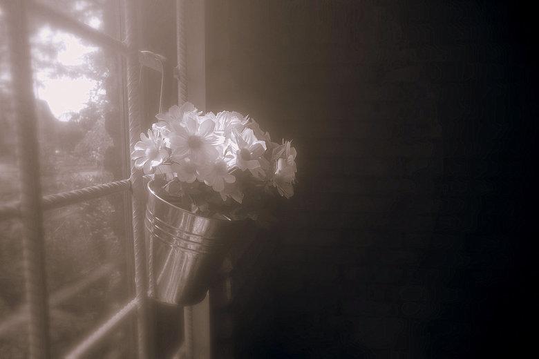 Light thru the darkness - Er kwam zo,n prettige lichtval door het raam naar binnen, heb gespeeld met een pastel filter en na bewerkt met zwart wit  en