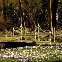 voorjaar op Landgoed Overcingel in Assen  2