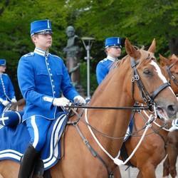 Koninklijke wacht Zweden