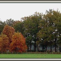 Boekesteyn-s'Graveland 2