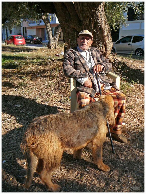 Zon is gratis - Deze man van in de negentig, heeft z'n stoeltje aan de overkant van de weg en z'n huisje staan. Vuilniscontainers rechts en
