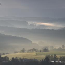 Mistige pracht in de heuvels van het zwarte woud