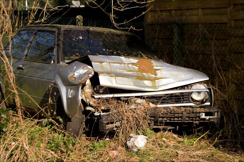Ongehoord in de natuur! - Dit hoort geen onderdeel uit te maken van de natuur. Daarom neemt de natuur de auto stilletjes aan bezit van de auto.