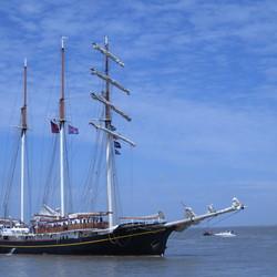 Tall Ship Race Harlingen