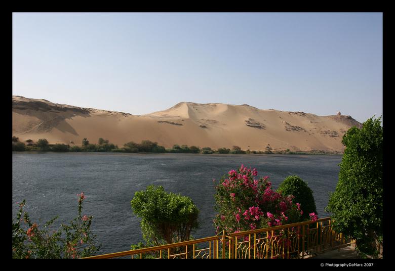 egypte woestijn oase