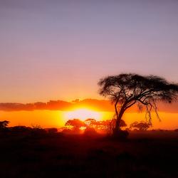Sunset@Amboseli