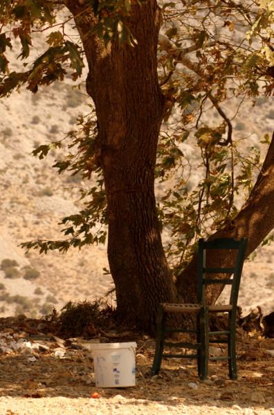 Mini taverne op Kreta - Weekje Kreta. Bij een boom, in de bergen..dit stoeltje. Ik zag in gedachten het oude gerimpelde mannetje al zitten.