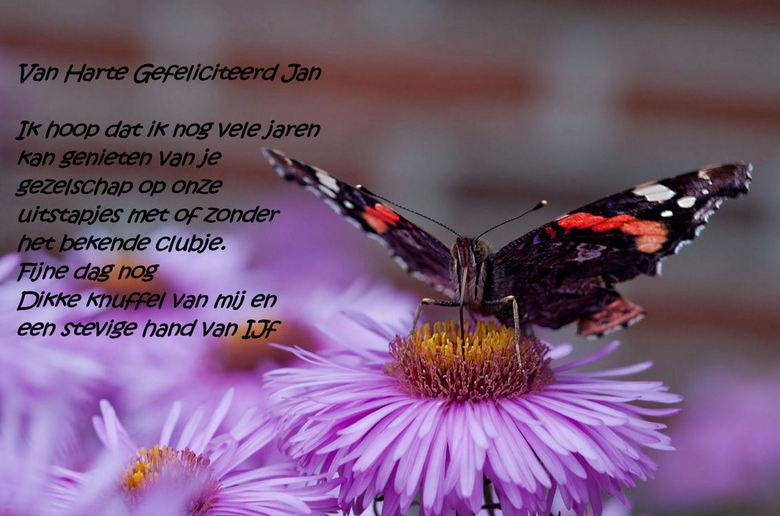 Speciaal voor Jan E. - Hiep hiep Hoera Het is donderdag 01-11-2012 en Jan Edelenbos is jarig.<br /> Jan je bent een grote vriend van mij geworden en