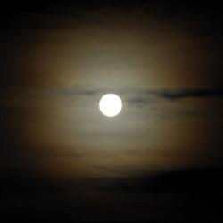 Moonshot @Scheveningen