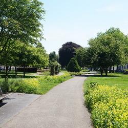 Park de Plantage