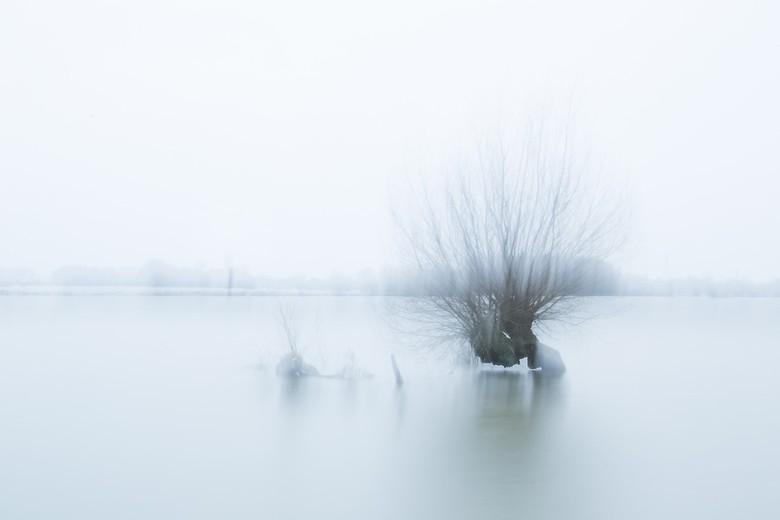 mystical morning - bij het hoge water bij de rijn vanochtend ..wachtend op een zonsopkomst..die dus niet kwam..dan maar een beetje expirimenteren met