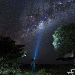 Stars in Pantanal