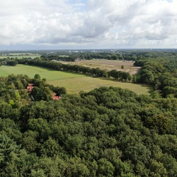 omgeving Soesterduinen in Soest