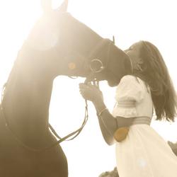 Paardenknuffel
