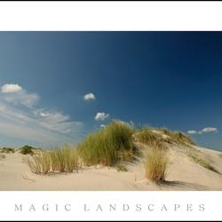 strand en duinen4