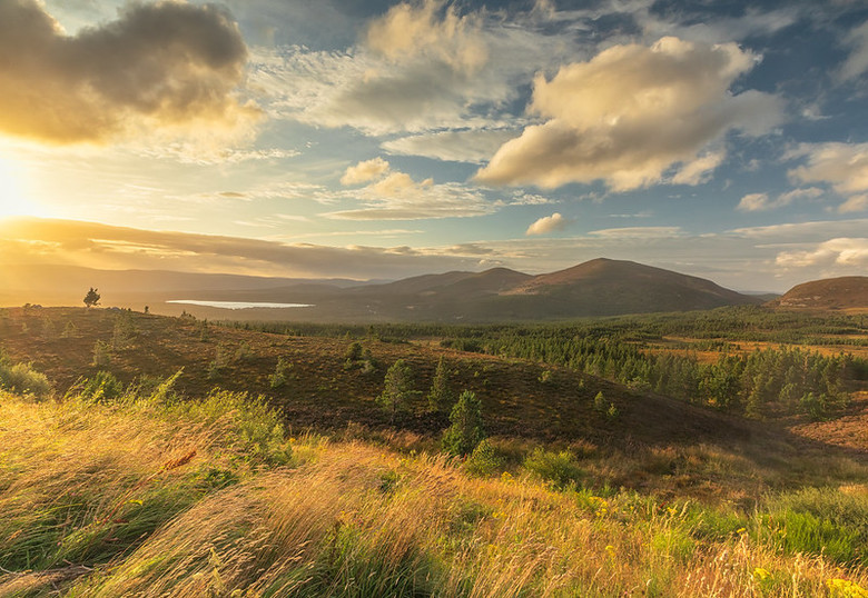 Cairngorms National Park (Schotland) -