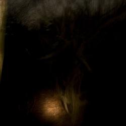 Scared in the dark