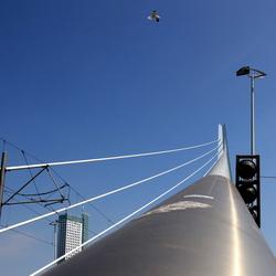 De Zwaan van Rotterdam