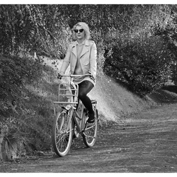 Bicycle ...