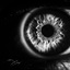 Eye B&W
