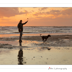 Playing with the dog on the beach...