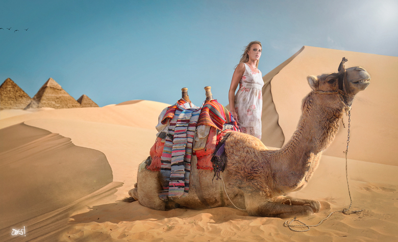 """De kamelen kunnen weer op stal - &quot;Het is weer voorbij die mooie zomer de kamelen kunnen weer op stal&quot; <img  src=""""/images/smileys/smile.png""""/"""