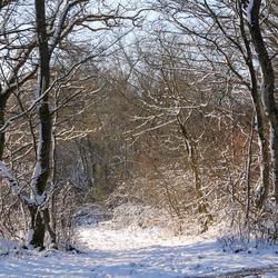 Winter in Beilstein