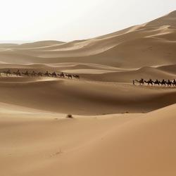 Erg Chebbi woestijn, Marokko