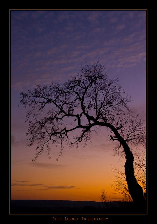 Sunset tree 2 - Gewoonweg weer prachtige lucht.<br /> ik hou gewoon van deze boom en vooral met die geweldige kleuren.<br />